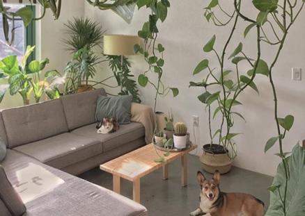10 Dinge, die in keinem Zuhause fehlen sollten