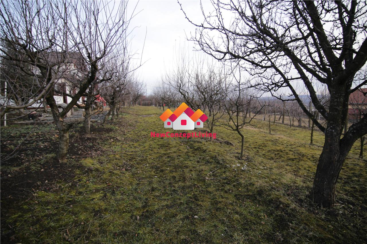 Cabana si teren intravilan de vanzare in Sibiu - 2600mp - Daia Noua