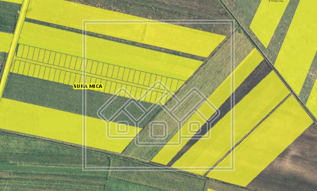 Teren de vanzare in Sibiu - Sura Mica - intravilan - 43000 mp