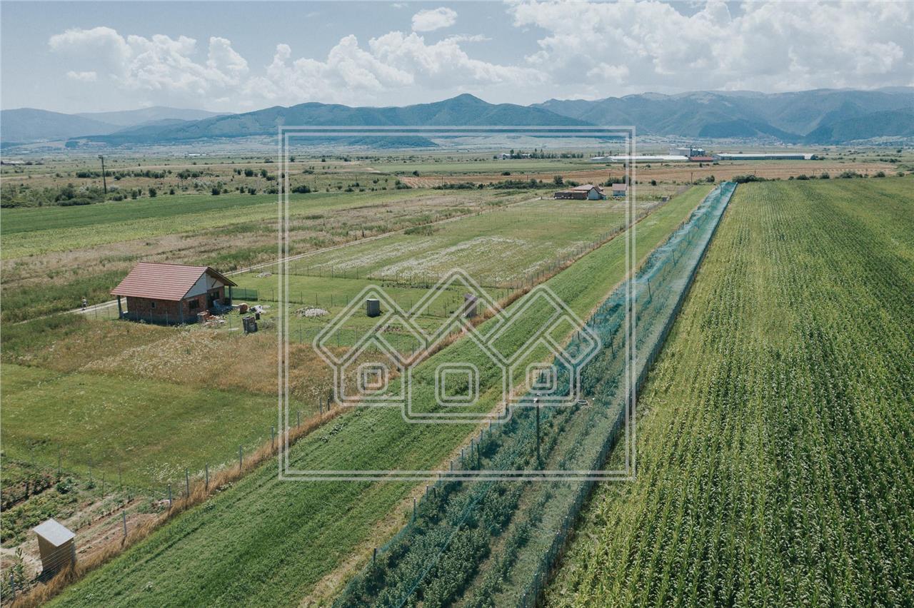Teren intravilan constructii de vanzare in Sibiu - Cristian - cu PUZ