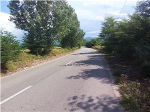 Teren de vanzare in Sibiu - Valea Avrigului - intravilan - 1000 mp