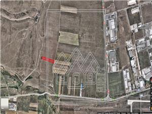 Teren de vanzare in Sibiu - 8000 mp - Zona Industriala Vest