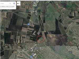 Teren de vanzare in Sibiu - extravilan - 4771 mp - Sura Mica