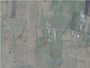 Teren de vanzare in Sibiu- 7100 mp -reper Complex Magnolia