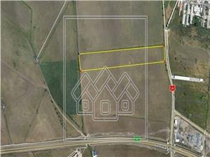 Land for sale in Sibiu- 19.100 sqm - store Hornbach