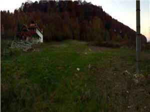 Teren de vanzare in Sibiu - 3.900 mp - zona Transfagarasan