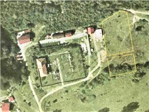 Land for sale in Sibiu - 3.900 sqm - Transfagarasan area