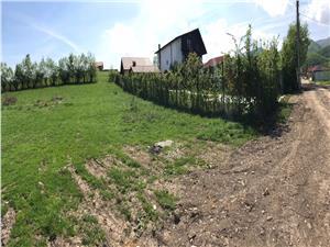 Teren de vanzare in Sibiu - Tocile - 1000 Mp - Zona minunata