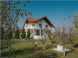 House for sale in Sibiu - 2000 sqm yard - Cellar and Garage