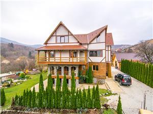 Vila Alpine - casa de poveste in inima naturii - Cisnadioara