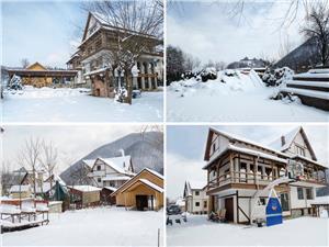 Vila Lux - casa de poveste in inima naturii - Cisnadioara