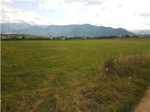 Teren de vanzare in Cisnadie- Calea Cisnadiei 445mp