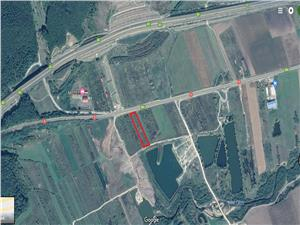 Land for sale in Sibiu  -Cristian - 3500 sqm