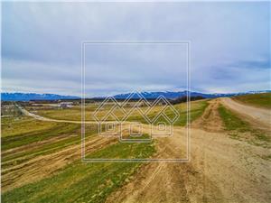 Grundstück kaufen in Sibiu  - 2900 sqm