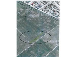 Land for sale in Sibiu  - farmland - 2000 sqm