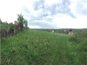 Teren de vanzare in Sibiu - Daia Noua