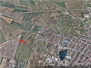 Teren de vanzare in Sibiu - Intravilan - 4000 mp