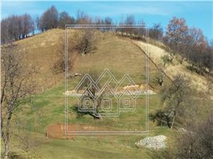 Land for sale in the tourist area Cisnadioara 3600 sqm