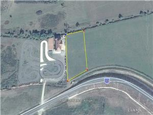 Land for sale in SibiuLand for sale in Sibiu - Rusciori - 7190 sqm