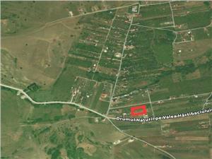 Teren de vanzare in Sibiu - Daia Noua - Posibilitate de Parcelare