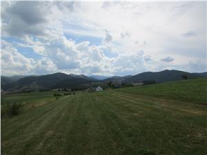 Teren de vanzare in Sibiu - Rasinari - 5000 mp extravilan