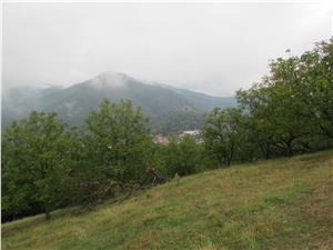 Teren de vanzare in Sibiu- Cisnadioara- Intravilan- 1600 mp
