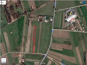 Teren de vanzare in Sibiu - 2999 mp - Padurea Dumbrava