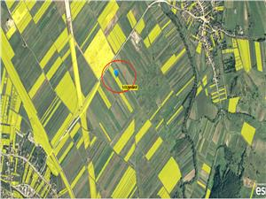 Teren de vanzare in Sibiu- 4500 mp-Sat Bungard- Pretabil pt Hale