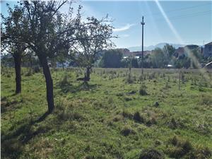 Teren de vanzare in Sibiu - Cisnadie - intravilan - 600 mp