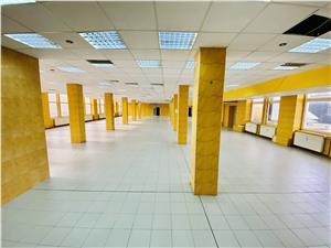Spatii industriale si birouri de inchiriat in Sibiu - Zona Terezian